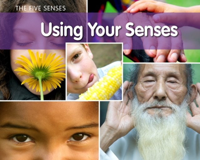 Using Your Senses?