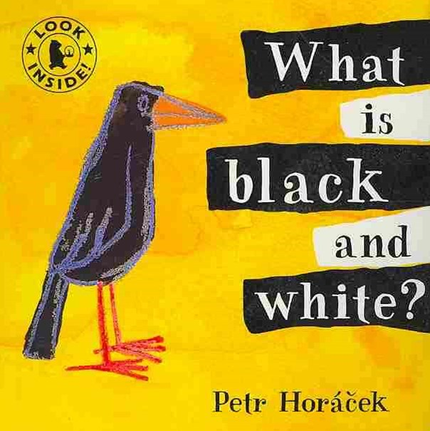 What Is Black And White? Board Book
