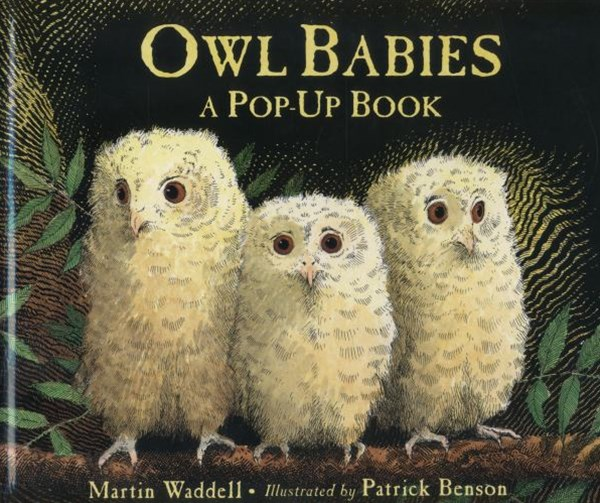 Owl Babies Pop- Up