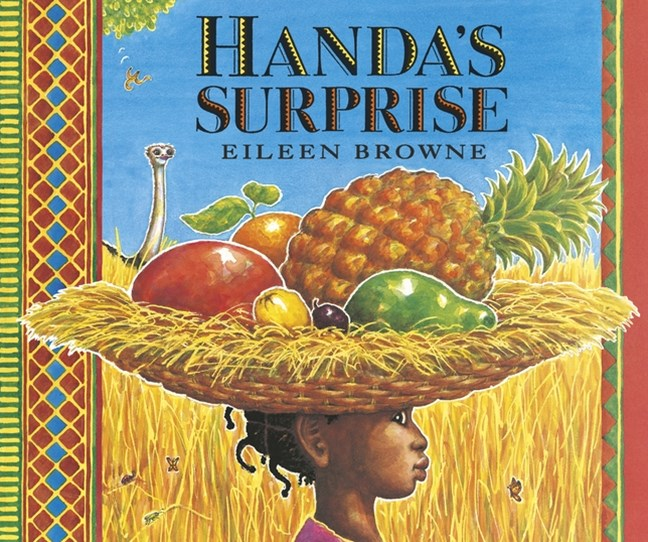 Handa's Surprise Board Book
