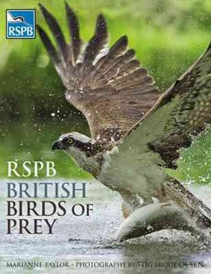 RSPB British Birds of Prey
