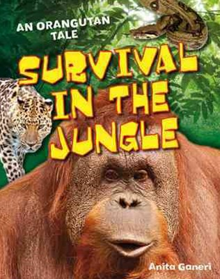 Survival in the Jungle