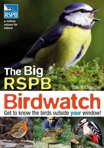 Big RSPB Birdwatch