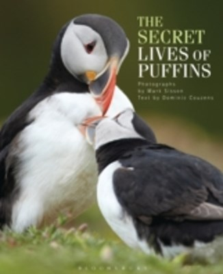 Secret Lives of Puffins