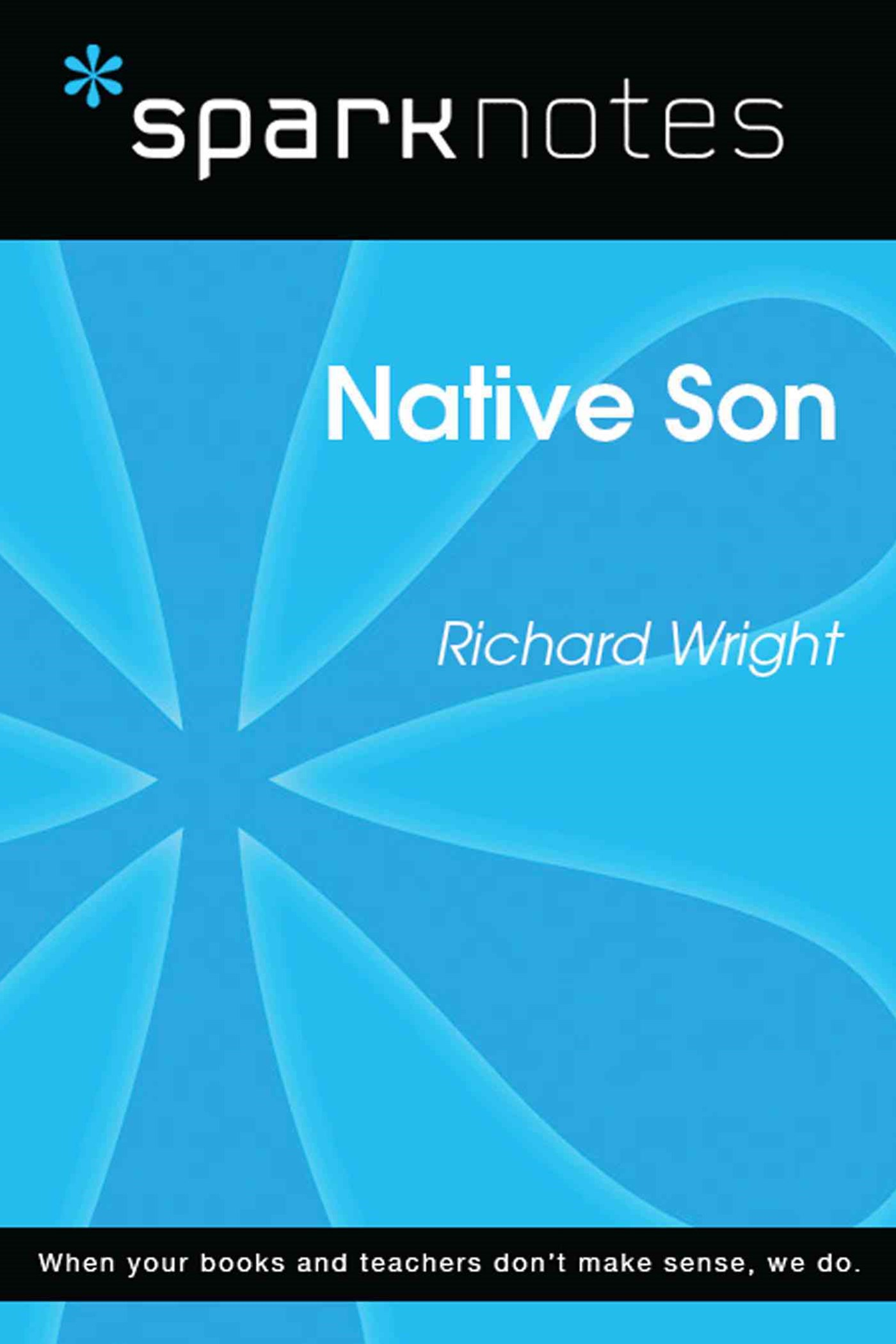 (ebook) Native Son (SparkNotes Literature Guide)