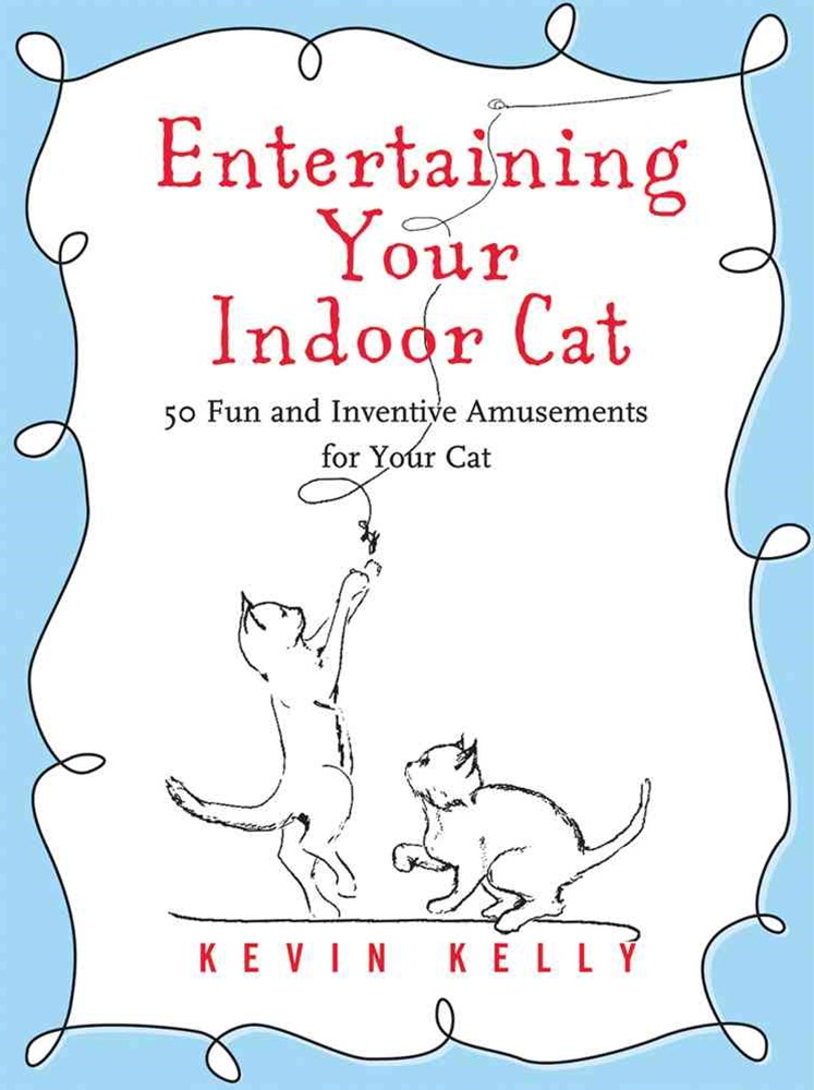 Entertaining Your Indoor Cat
