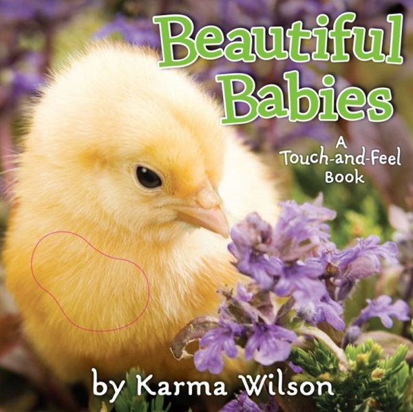 Beautiful Babies: A Touch and Feel Book