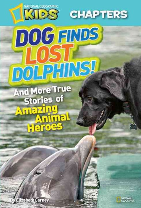 Dog Finds Lost Dolphins!