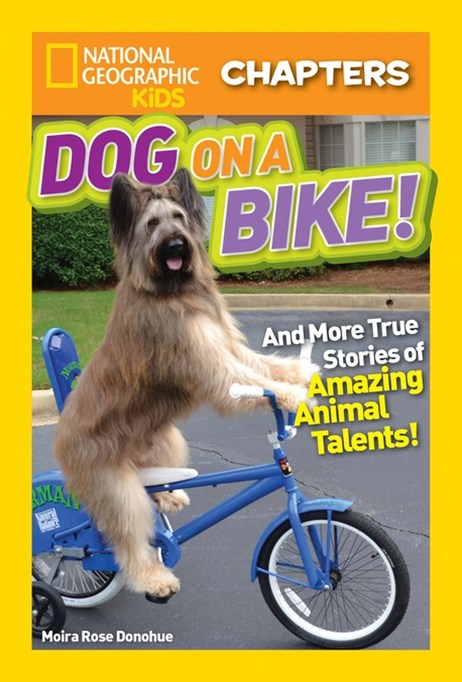 Dog on a Bike and More True Stories of Amazing Animal Talents!