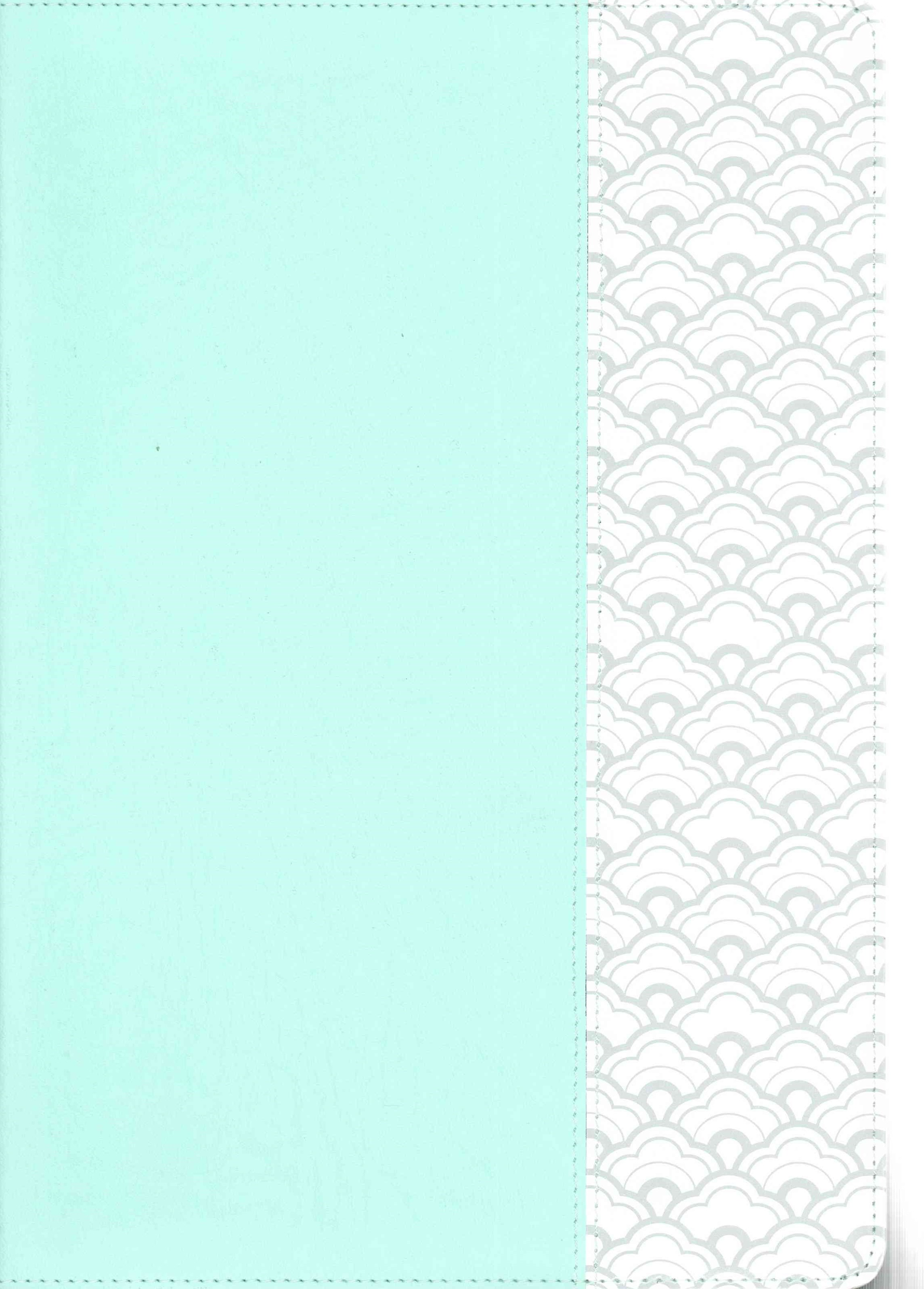 NKJV Super Giant Print Reference Bible, Mint Green LeatherTouch, Indexed
