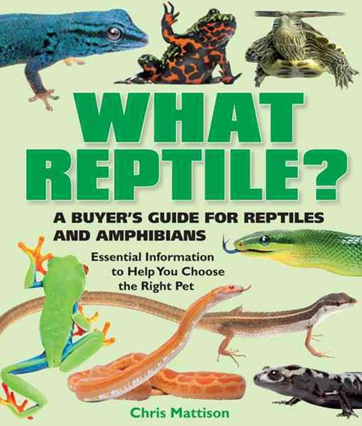 What Reptile?