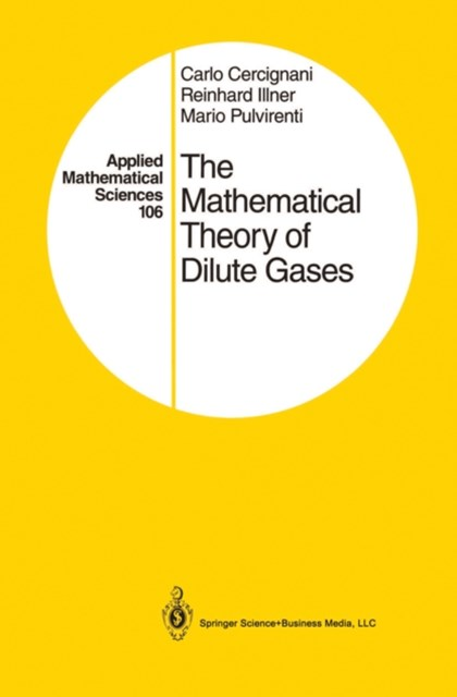 Mathematical Theory of Dilute Gases