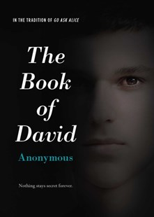 (ebook) The Book of David - Children's Fiction