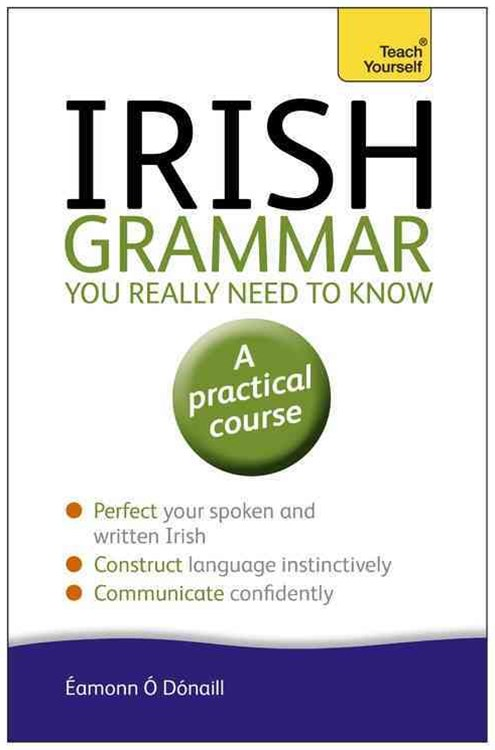 Irish Grammar You Really Need to Know: Teach Yourself
