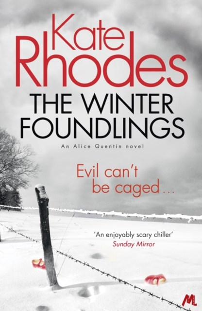 (ebook) The Winter Foundlings