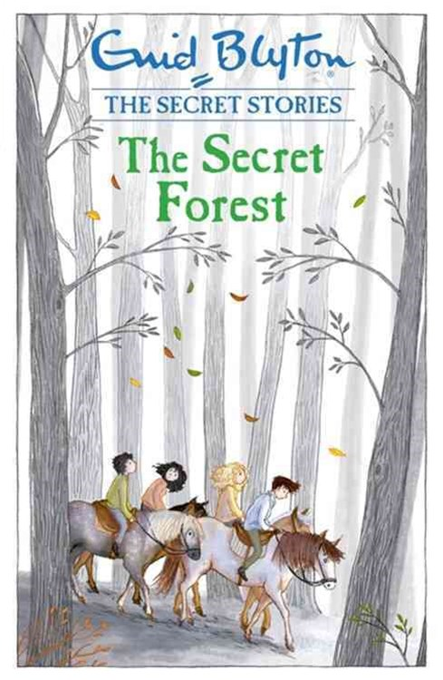 Secret Stories: The Secret Forest