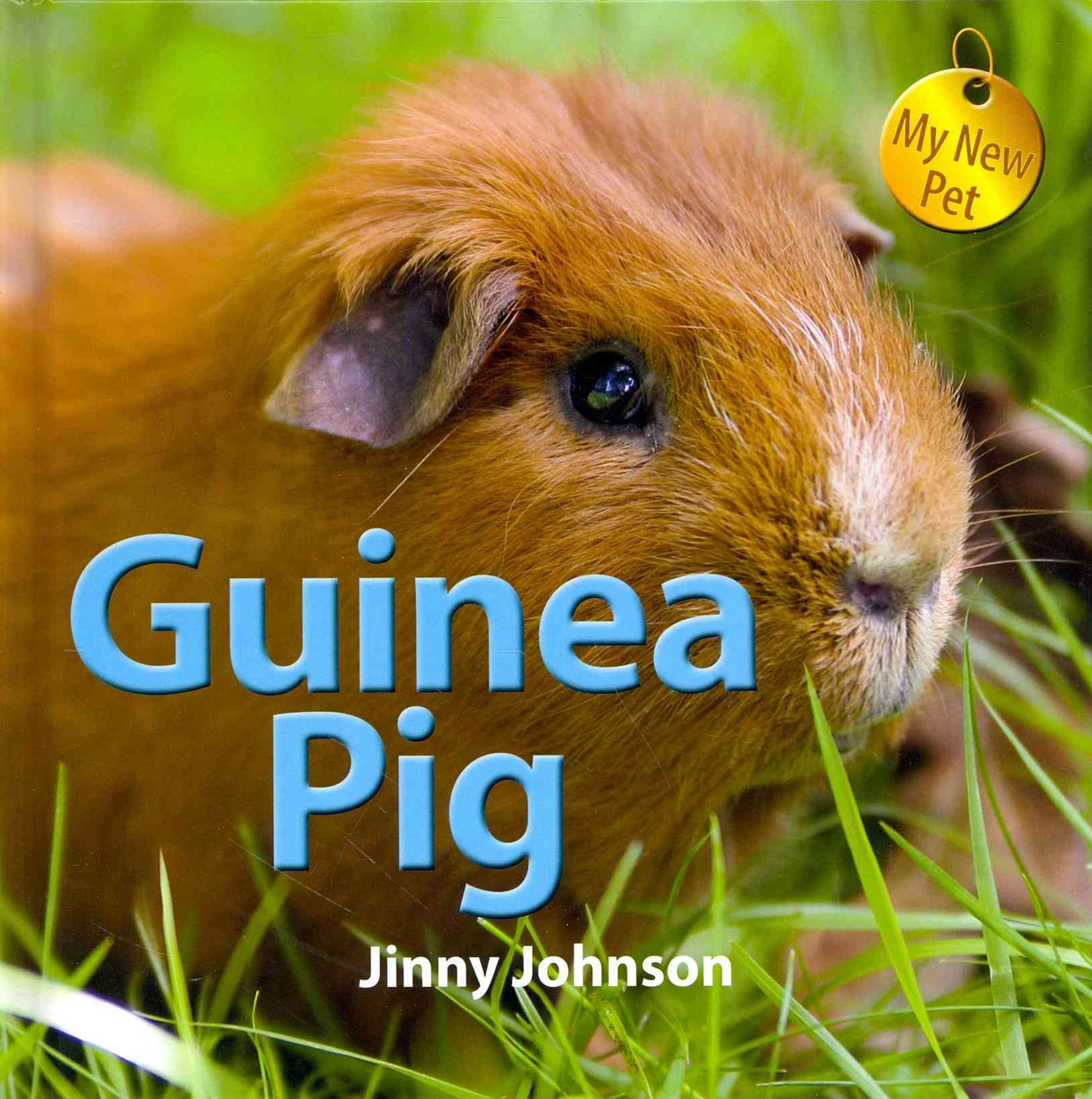 My New Pet: Guinea Pig