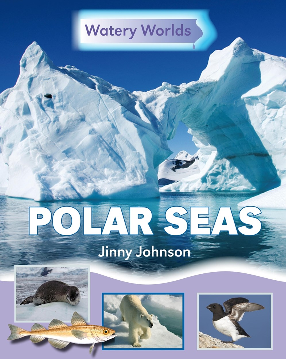 Watery Worlds: Polar Seas