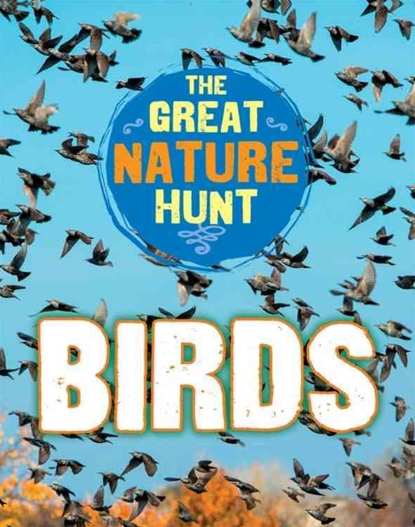 The Great Nature Hunt: Birds