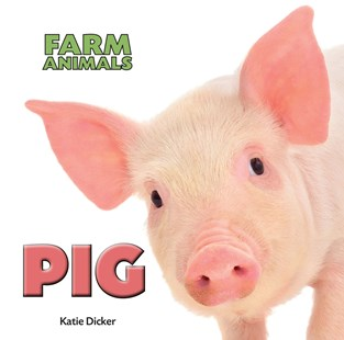 Farm Animals: Pig by Katie Dicker (9781445151090) - HardCover - Non-Fiction Animals