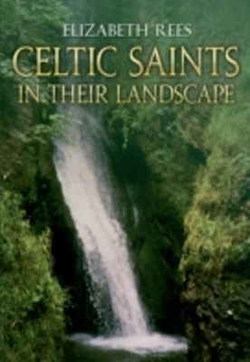 Celtic Saints In Their Landscape