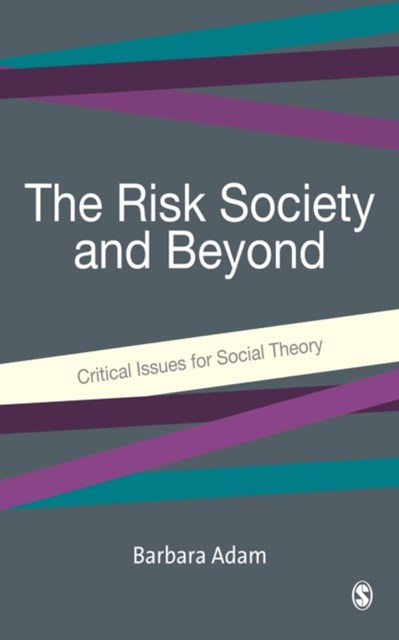 Risk Society and Beyond