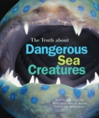 Truth About Dangerous Sea Creatures