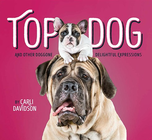 Top Dog, and Other Classic Canine Expressions