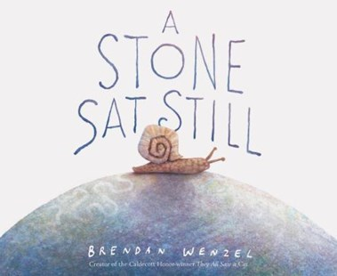 A Stone Sat Still by Brendan Wenzel (9781452173184) - HardCover - Non-Fiction Animals