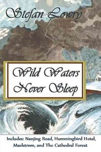Wild Waters Never Sleep by Stefan Lowry (9781462062799) - PaperBack - Poetry & Drama Poetry