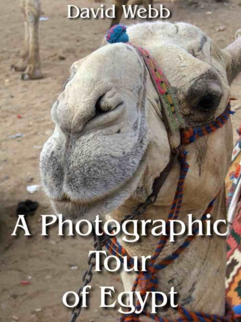 (ebook) Photographic Tour of Egypt