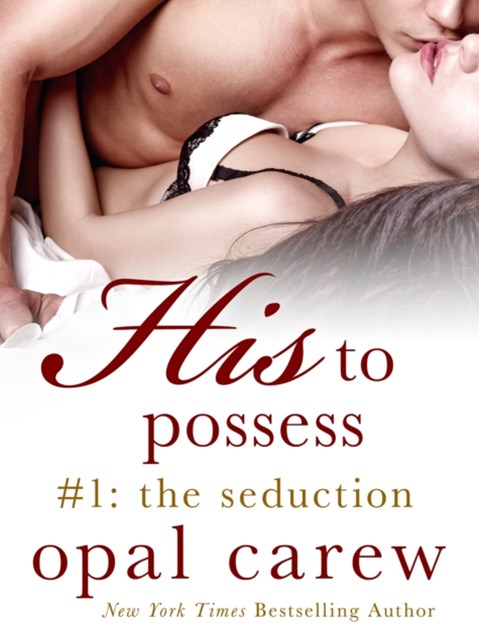 (ebook) His to Possess #1: The Seduction