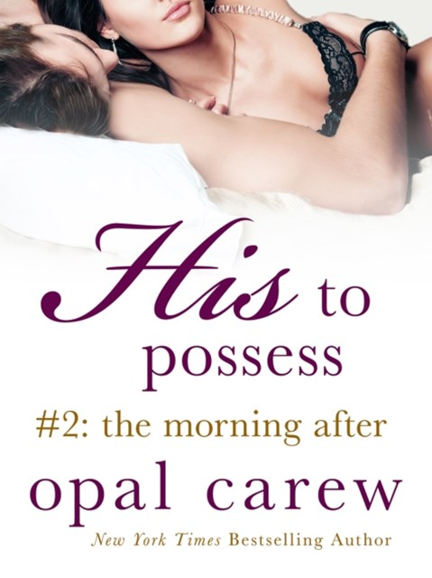 (ebook) His to Possess #2: The Morning After
