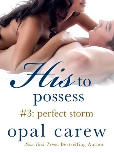 (ebook) His to Possess #3: Perfect Storm