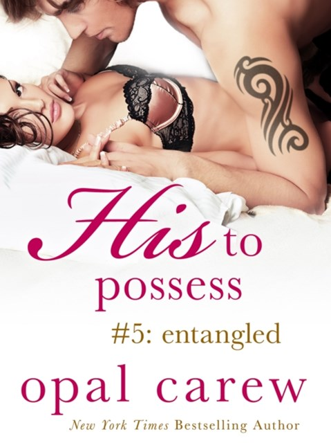 (ebook) His to Possess #5: Entangled