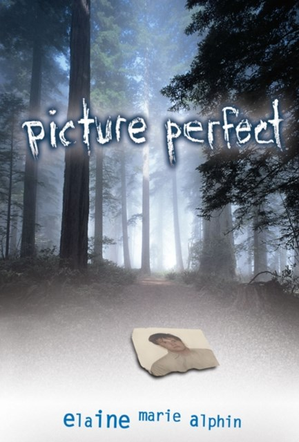 (ebook) Picture Perfect