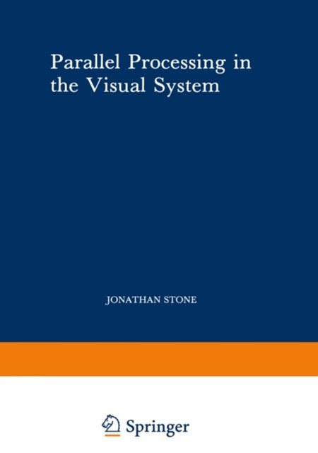 (ebook) Parallel Processing in the Visual System