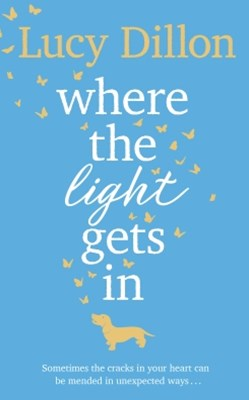 (ebook) Where The Light Gets In