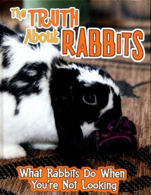 Truth About Rabbits