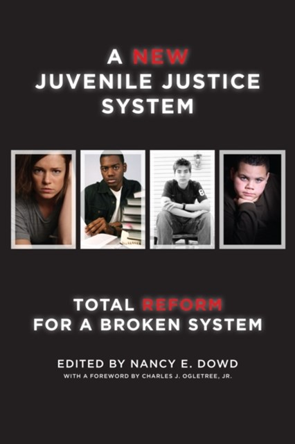 New Juvenile Justice System