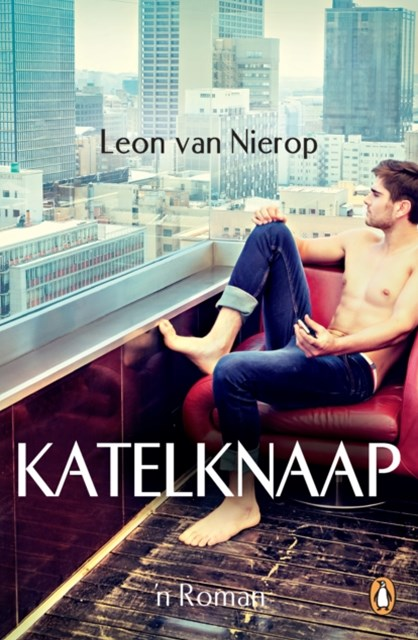 (ebook) Katelknaap