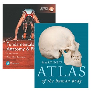 Fundamentals of Anatomy & Physiology, Global Edition + Martini's Atlas of the Human Body - Business & Finance Ecommerce