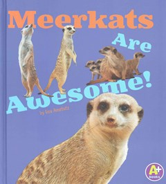 Meerkats Are Awesome!
