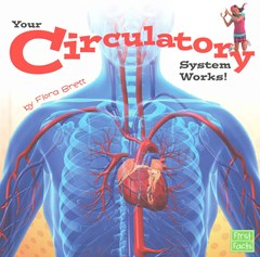 Your Circulatory System Works!