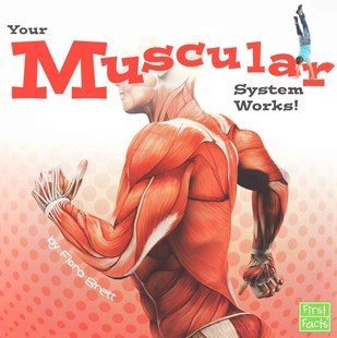 Your Muscular System Works! by Flora Brett (9781491422496) - PaperBack - Non-Fiction