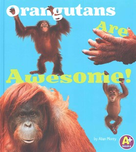 Orangutans Are Awesome! - Non-Fiction Animals