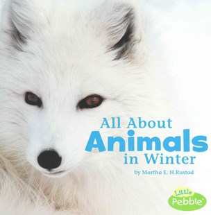 All about Animals in Winter by Martha E. H. Rustad (9781491460177) - PaperBack - Non-Fiction Animals