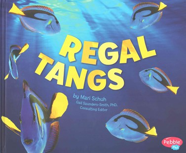 Regal Tangs - Non-Fiction Animals