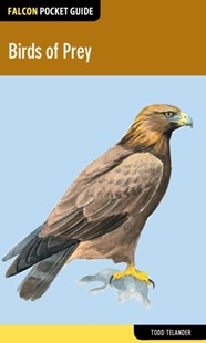 (ebook) Birds of Prey - Pets & Nature Birds