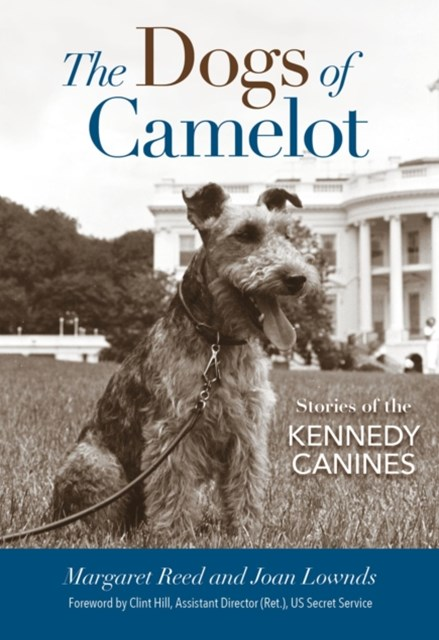 Dogs of Camelot